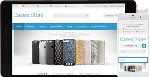 cases e-store
